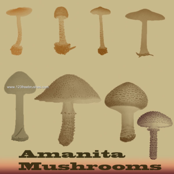 123freebrushes_mushrooms_9_photoshop_food_free_brush
